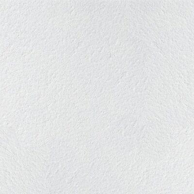 Плита ARMSTRONG Retail, 600х1200х12